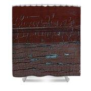 Red Rune Rubrics Shower Curtain