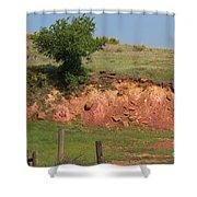 Red Sandstone Hillside With Grass Shower Curtain by Robert D  Brozek