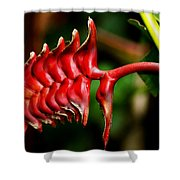Red Scales Shower Curtain