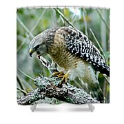 Red Shoulder Scream Shower Curtain