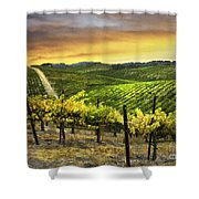 Red Soles Sunrise Shower Curtain