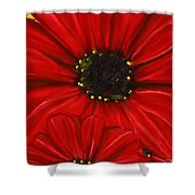 Red Spectacular- Red Gerbera Daisy Painting Shower Curtain