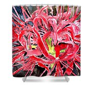 Red Spider Lily Flower Painting Shower Curtain