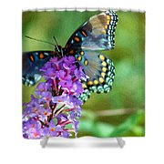 Red Spotted Purple Butterfly Photopainting Shower Curtain