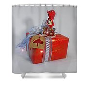 Red Squirrel Gift Shower Curtain