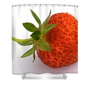 Red Strawberry With Stem Shower Curtain