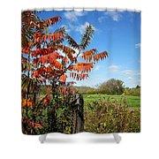 Red Sumac Tree Shower Curtain