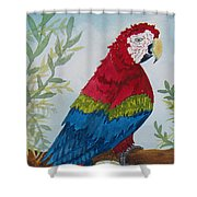 Red Tail Macaw Too Shower Curtain