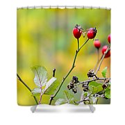 Red Time Shower Curtain