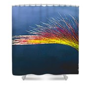 Red Tipped Grass Shower Curtain by Robert Bales