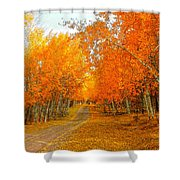 Red Tree Rd Shower Curtain
