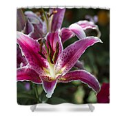 Red Tropical Flowers Shower Curtain
