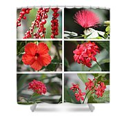 Red Tropicals Collage Shower Curtain