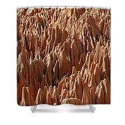 red Tsingy Madagascar 3 Shower Curtain