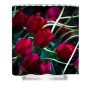 Red Tulip River Shower Curtain