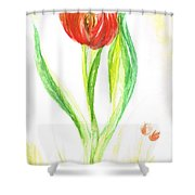 Red Tulip -of Amsterdam   Shower Curtain