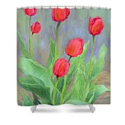Red Tulips Colorful Painting Of Flowers By K. Joann Russell Shower Curtain