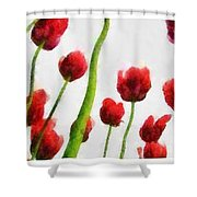 Red Tulips From The Bottom Up Triptych Shower Curtain
