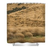 Red Tussock Preserve Shower Curtain