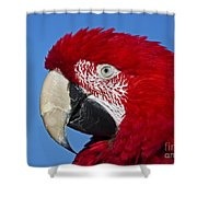 Red White And Blue... Shower Curtain