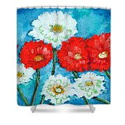 Red White And Blue Zinnia Flowers Shower Curtain