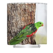 Red-winged Parrot Shower Curtain