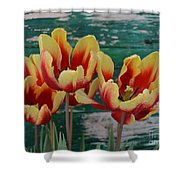 Red Yellow Tulips Shower Curtain