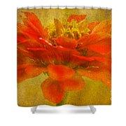 Red Zinnia Essence Shower Curtain