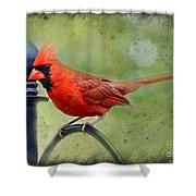 Redbird Alert Shower Curtain