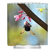 Redbud And The Bumble Shower Curtain