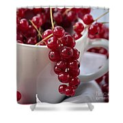 Redcurrant Close Up Shower Curtain