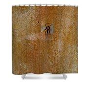 Redgum Tree Shower Curtain