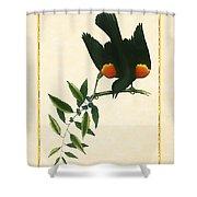 Redwing Blackbird Vertical Shower Curtain