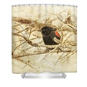 Redwing In The Wind Shower Curtain