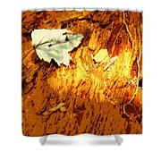 Redwood Shower Curtain