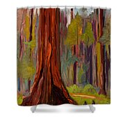 Redwood Giant Shower Curtain