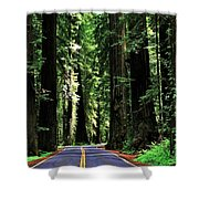 Redwood Highway Shower Curtain