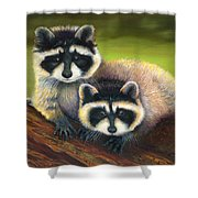 Redwood Rascals Shower Curtain