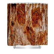 Redwood Spirit Shower Curtain