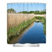 Reed Beds At Radipole Lake 2 Shower Curtain