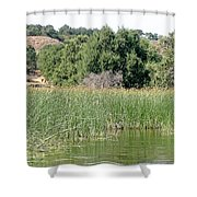 Reed Shore Shower Curtain