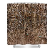 Reed Water Reflection Shower Curtain