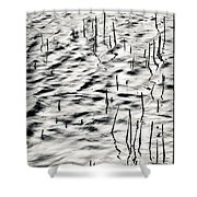 Reeds In Ripples Shower Curtain