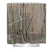 Reeds Shower Curtain