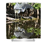 Reflected Great Blue Heron Shower Curtain