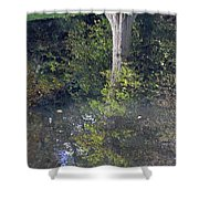 Reflected Tree Shower Curtain