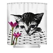 Reflecting Kitten Shower Curtain