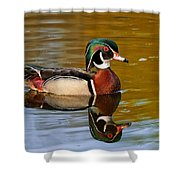 Reflecting Nature's Beauty Shower Curtain