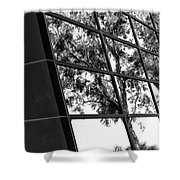 Mirror Image Palm Springs Shower Curtain
