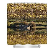 Reflection-country-victoria  Shower Curtain